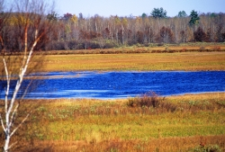 Sandhill Wildlife Area