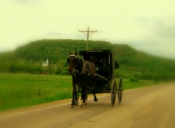 Amish buggy near La Crosse