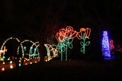 Holiday Light Display - Janesville