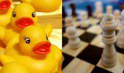 Rubber ducks and chess pieces