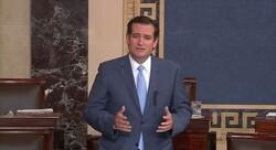 U.S. Senator Ted Cruz (R-Texas)