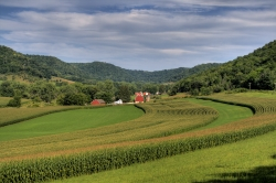 Farm in the Driftless Region