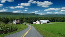 farm scene with long road