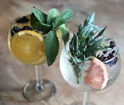 Spanish gin & tonics