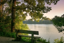 bench near water