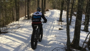 Chequamegon Area Mountain Bike Association trails
