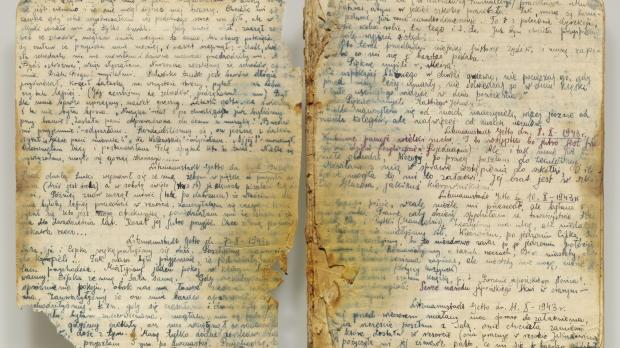 The diary of Rywka Lipszyc