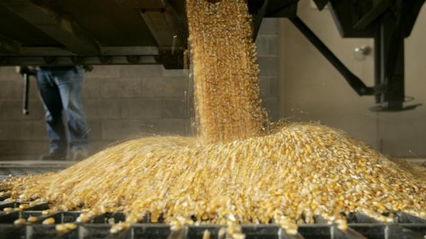 Corn and Ethanol