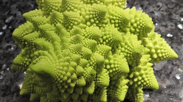 A head of Romanesco broccoli sits on a gray marble counter.