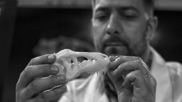 Archeologist examining a bone