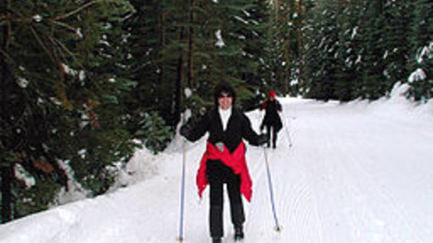 Cross-country-skiing, image by Wikimedia Commons user Peterparr