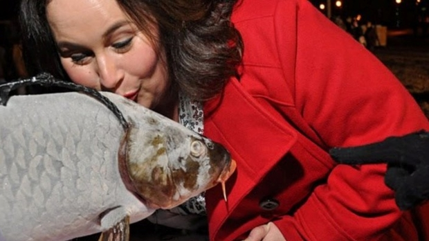 "Wis. Tourism Sec. Stephanie Klett kisses ""Lucky"" the carp in Prairie du Chien"