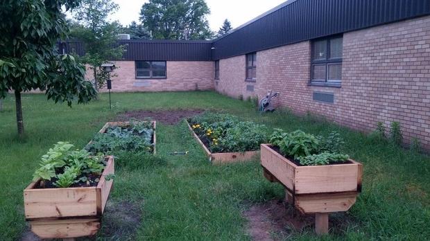 Lemonweir school garden