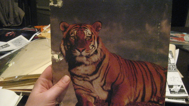 Trapper Keeper--With Tiger!