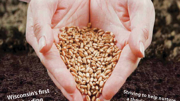 2013-NM-04-04-seedgraphic.png