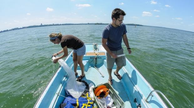 Looking for aquatic invasive species