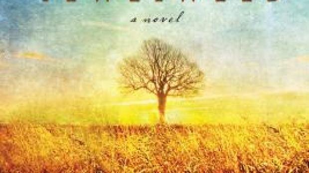 Jewelweed book