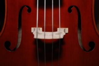 violin sounding board