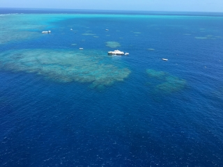 Helicopter view over Great Barrier Reef near Cairns, AU - Photo by Allen Rieland