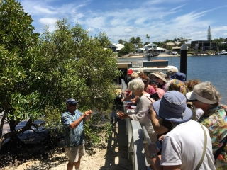 Noosa River Eco-Tour, Queensland - Photo by Allen Rieland