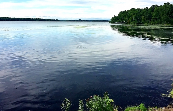 Clearing Up Murky Lake Water Has Impact On Nearby Property Values