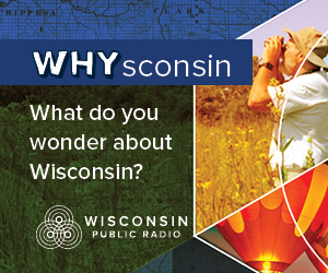 Whysconsin: What do you wonder about Wisconsin?
