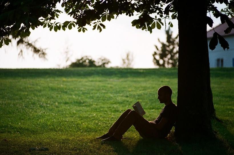 man reading under tree