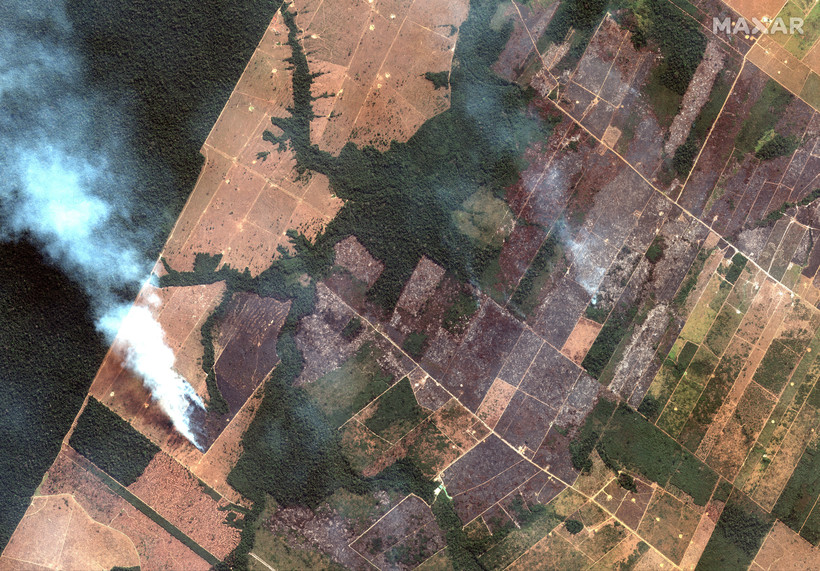 Fires burning in the State of Rondonia, Brazil, in the upper Amazon River basin