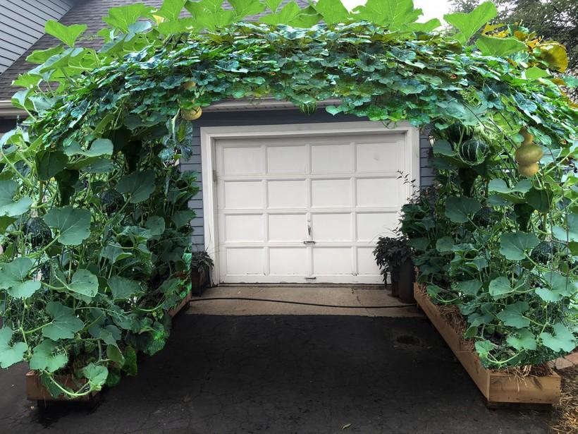Arch garden over driveway