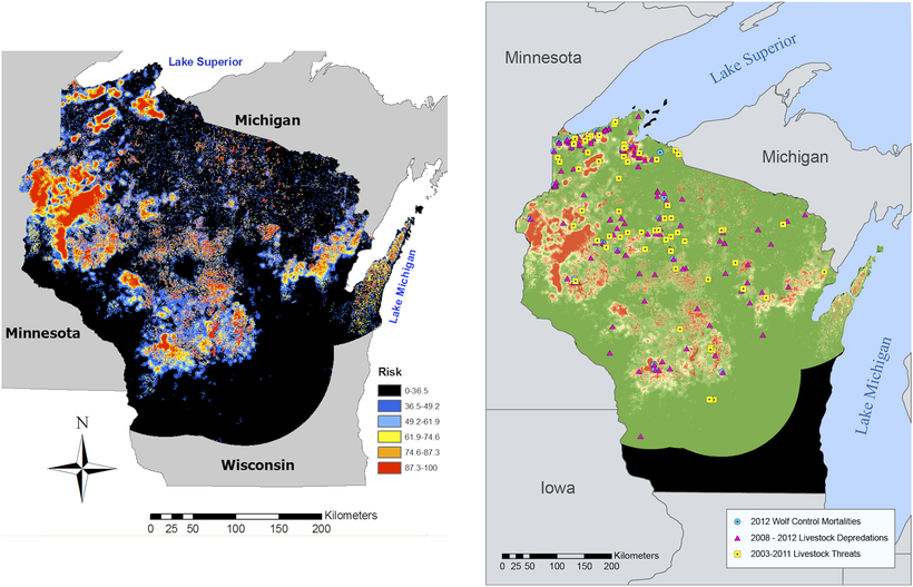 Researchers Risk Map Helps Predict Wolf Attacks On Wisconsin