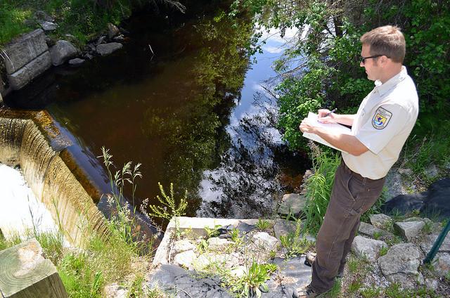 Sea Lamprey Decline In Lake Michigan On The Rise In Lake Superior