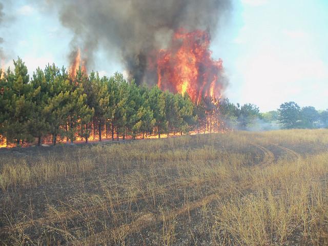 Smokey Spur Fire