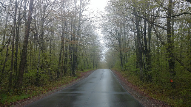 Road in theChequamegon-Nicolet National Forest