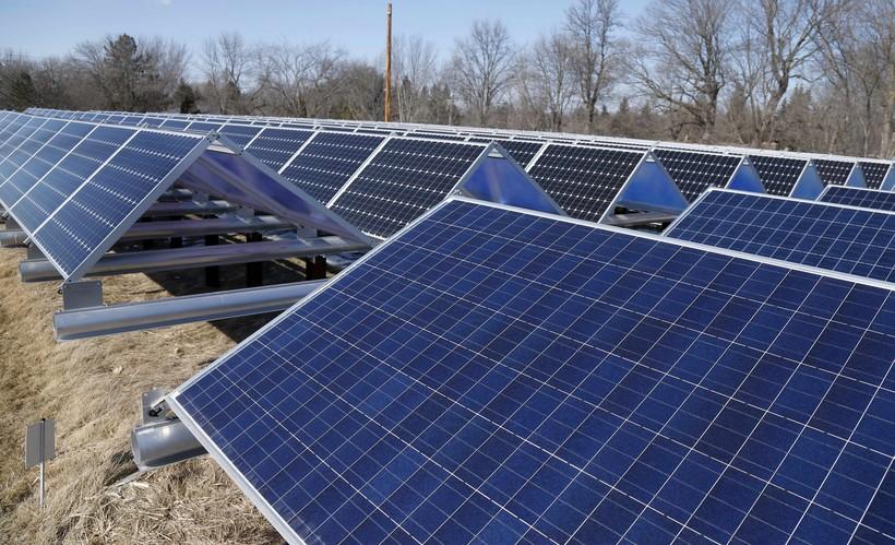 panels in a solar garden
