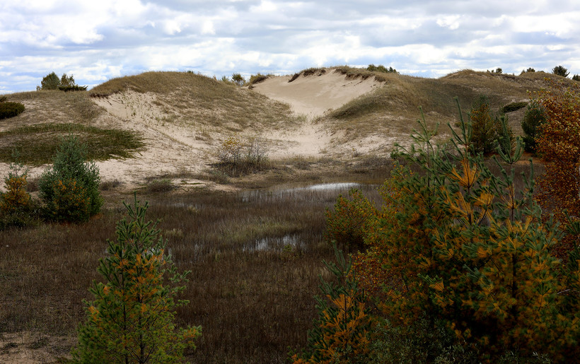 Sand dunes are seen at Kohler-Andrae State Park
