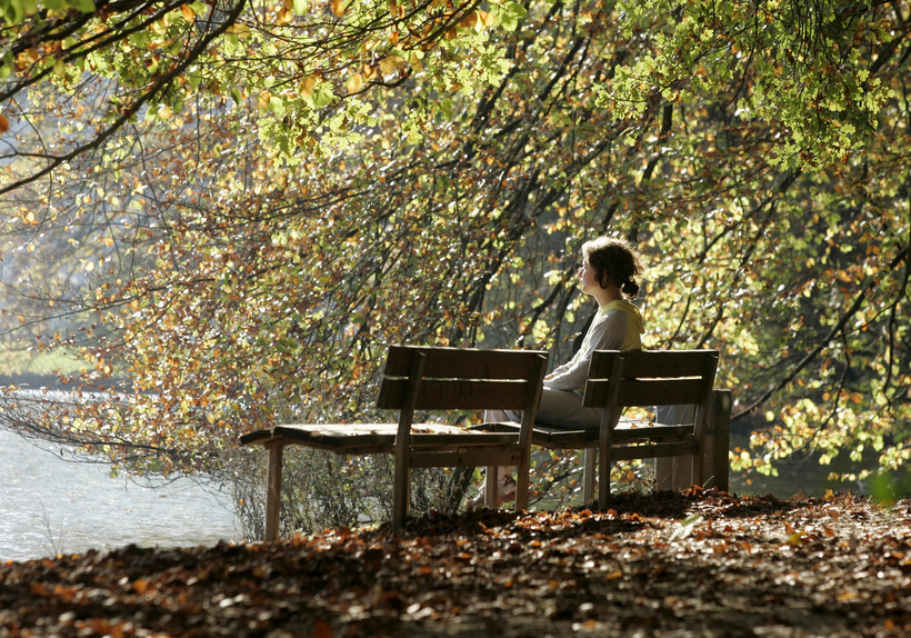 medication, sitting on bench, nature