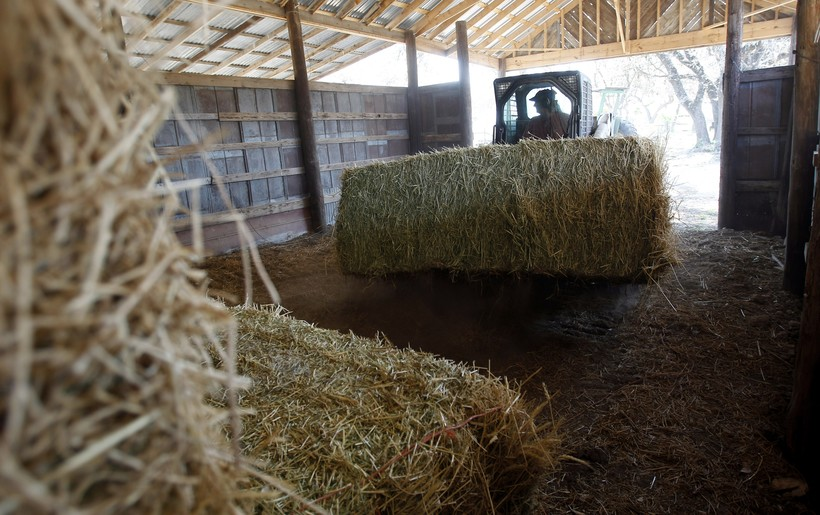 farmer moving hay