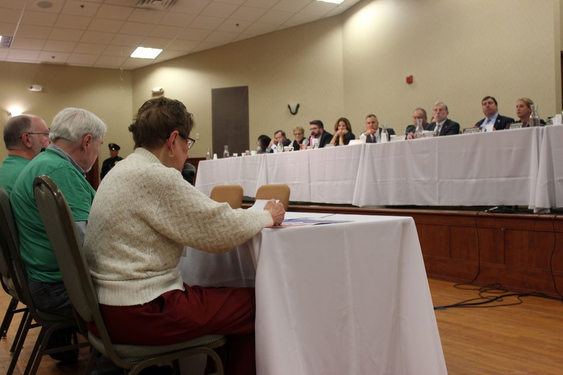 Joanne Kaus testifies at the first public hearing on the state budget