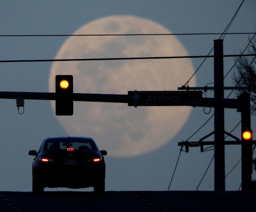 A motorist waits at a red light