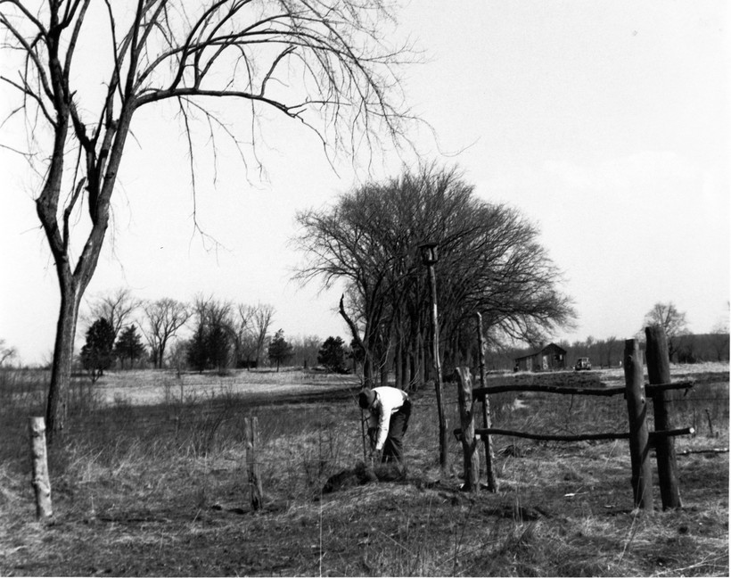 Aldo Leopold planting a tree at the Shack in Baraboo
