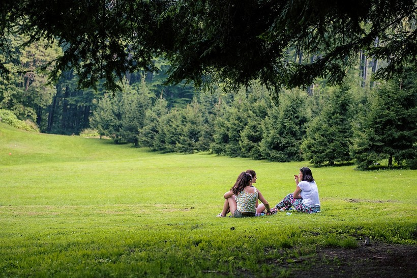 teenage girls having a picnic in field