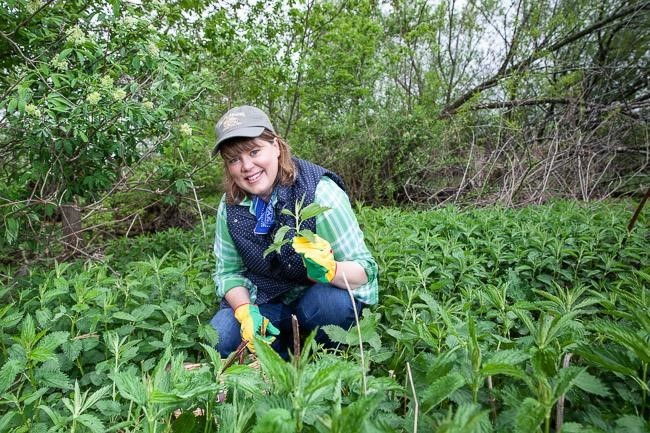 Inga Witscher in a patch of nettles.