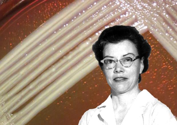 A collage of microbiologist Elizabeth O. King and an Elizabethkingia culture