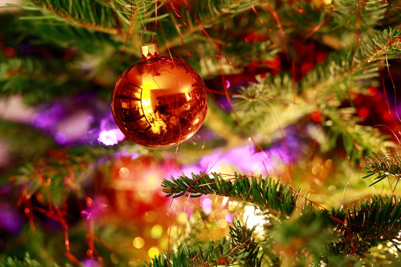 An ornament hangs on a tree