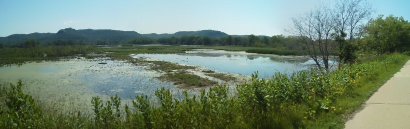 La Crosse River Marsh