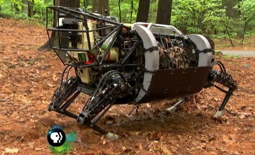 Ox Robot