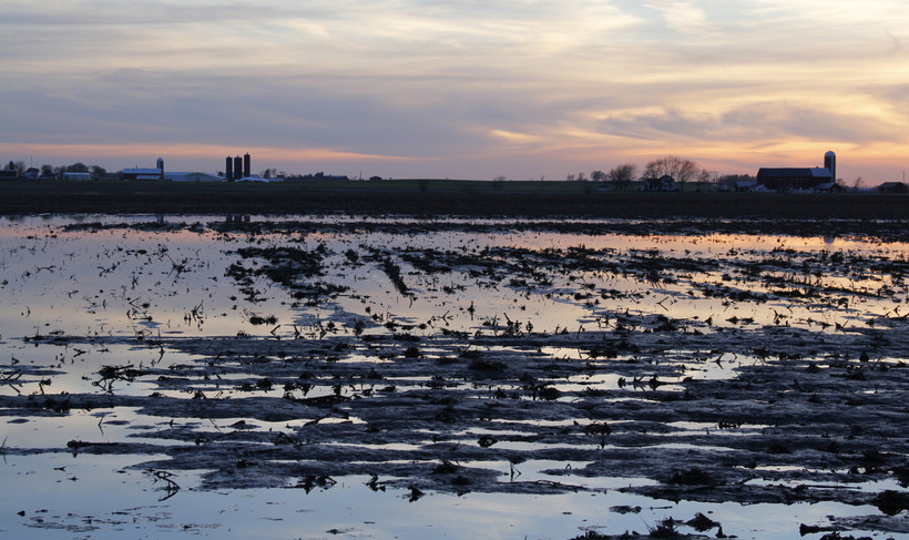 Flooded field in Calumet County, May 2013