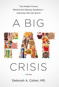 """""""A Big Fat Crisis"""" book cover"""