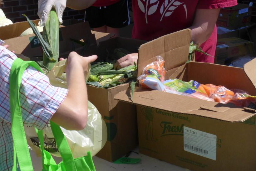 women picks produce at outdoor food pantry