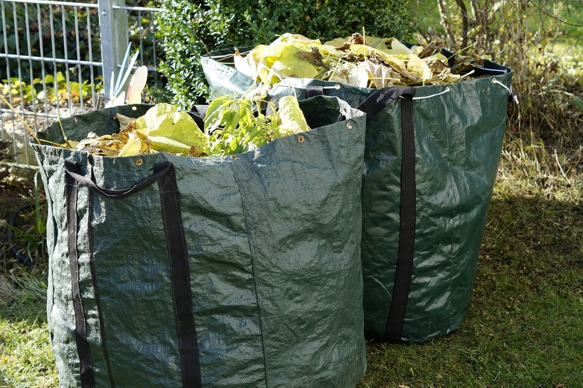Garden Waste Clean Up